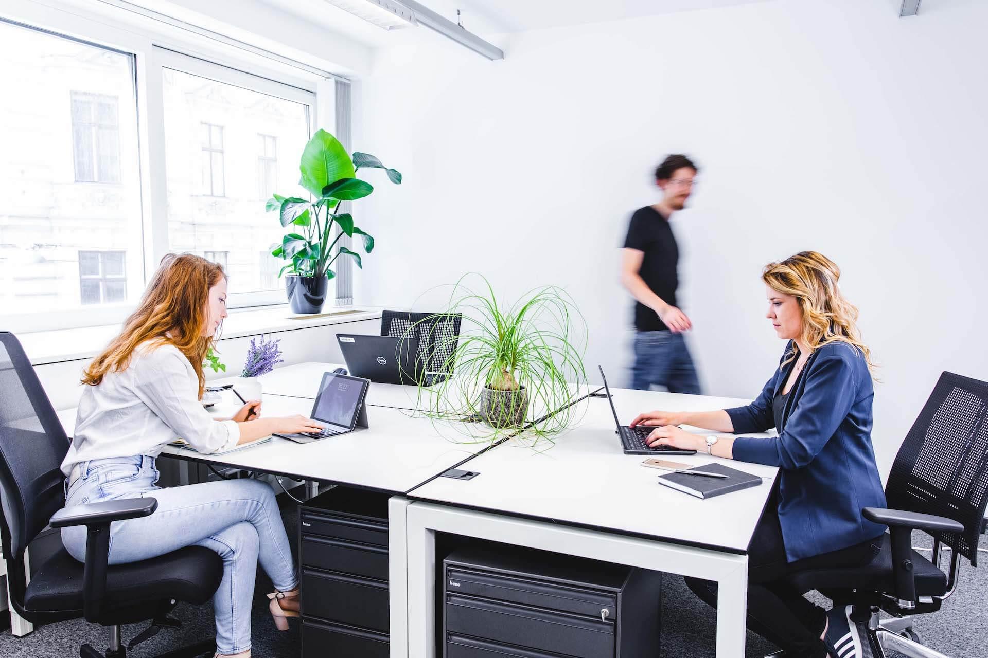 Prviate Office Coworking Space Vienna